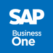 SAP Business One Manual